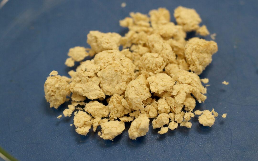 ITENE obtiene biopolímeros de quitina a partir del exoesqueleto de larvas del gusano de la harina